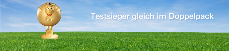 http://www.dws.de/MediaLibrary/6160266a-b8bb-4c4d-afe1-ae9275a1831a/DE-de-Head-DWS-RiesterRente-Premium.jpg